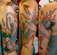 2 headed egret
