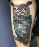 marcus_bankhead_dead_owl