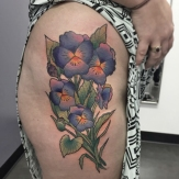 marcus_bankhead_pansies_flower