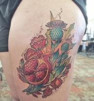 pomegranate thistle